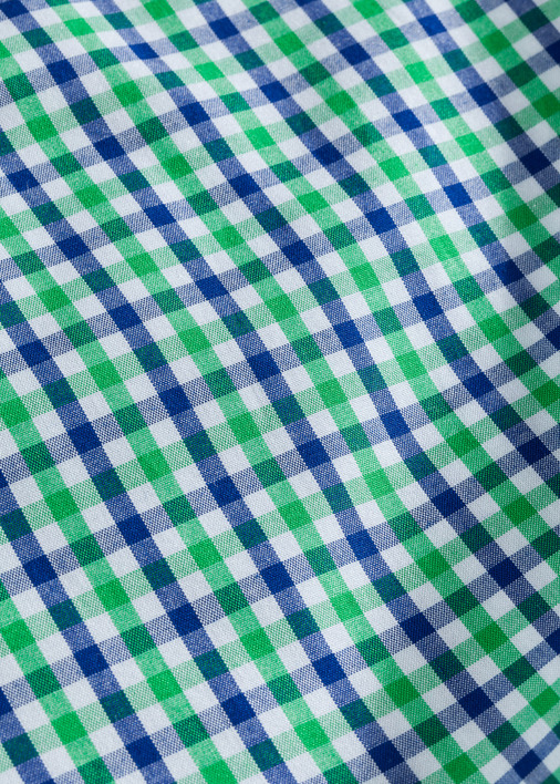 Green and Blue Mini-Gingham Product Image 5
