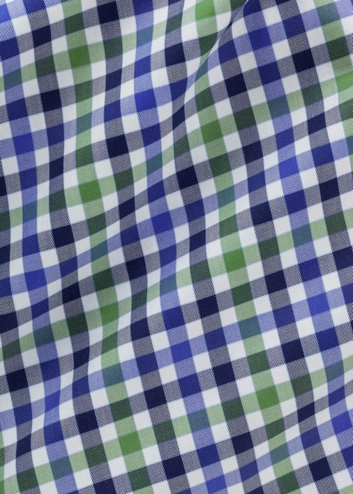 Green and Blue Fillmore Check Product Image 5